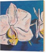 White Phalaenopsis Orchids Wood Print