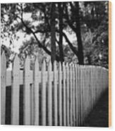 White Picket Fence- By Linda Woods Wood Print