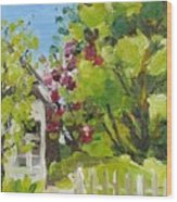 White Picket Fence Wood Print