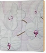 White Pink Orchide Wood Print