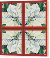 White Poinsettia Quartet Wood Print