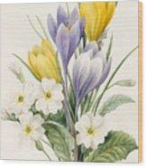 White Primroses And Early Hybrid Crocuses Wood Print