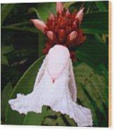 White Rainforest Flower Wood Print