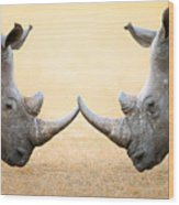 White Rhinoceros  Head To Head Wood Print