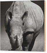 White Rhinoceros  In Due-tone Wood Print