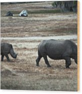 White Rhino's Wood Print