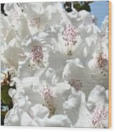White Rhododendrons Flowers Art Prints Baslee Troutman Wood Print