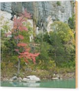 White River Arkansas Wood Print