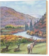 White River Wood Print