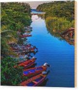 White River Jamaica Wood Print