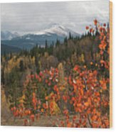 White River National Forest Autumn Panorama Wood Print