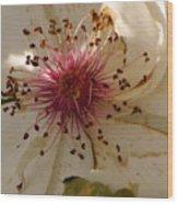 White Rose Centerpiece Wood Print