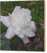 White Rose In Rain Wood Print