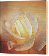 White Rose On Deep Texture Wood Print