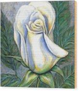 White Rose One Wood Print