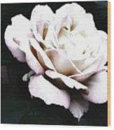 White Rose,stylization Wood Print