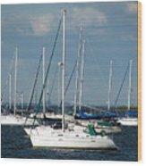 White Sailboats Wood Print