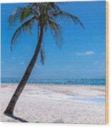 White Sand Beaches And Tropical Blue Skies Wood Print