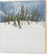 White Sand Green Grass Blue Sky Wood Print