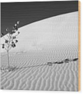 White Sands 4 Wood Print