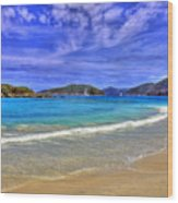 White Sands Beach Wood Print