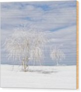 White Sands Duo Wood Print