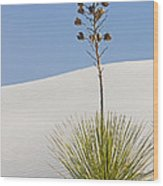 White Sands National Monument, Nm Wood Print