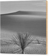 White Sands Yucca Wood Print