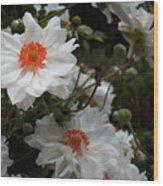 White Satin Wood Print
