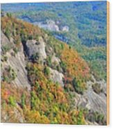 White Side Mountain Fool's Rock In Autumn Vertical Wood Print