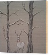 White Stag Wood Print