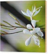 White Stem Flowers Wood Print