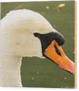 White Swan Profile Wood Print