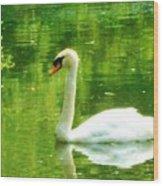 White Swan Swim In Pond Wood Print