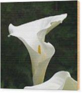White Swirls Wood Print