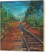 White Tail Deer In Southern Woods Wood Print