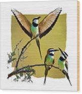 White Throated Bee Eater Pf Wood Print