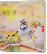 White Throated Sparrow - Digital Paint 1                                             Wood Print
