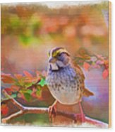 White Throated Sparrow - Digital Paint 3 Wood Print