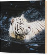 White Tiger 21 Wood Print