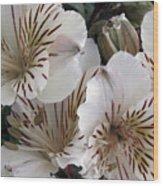 White Tiger Azalea Wood Print