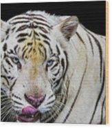 White Tiger Closeup Wood Print
