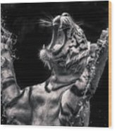 White Tiger Featured In Greece Exhibition Wood Print