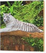 White Tiger Wood Print by MotHaiBaPhoto Prints