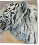 White Tigress Aceo Wood Print