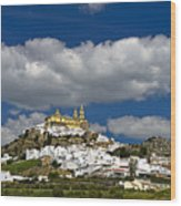 White Town Of Olvera, Andalusia, Spain Wood Print