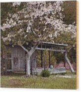 White Tree And Old Barn Wood Print