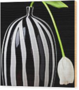 White Tulip In Striped Vase Wood Print