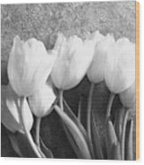 White Tulips Against Wallpaper Wood Print