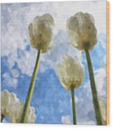 White Tulips And Cloudy Sky Digital Watercolor Wood Print